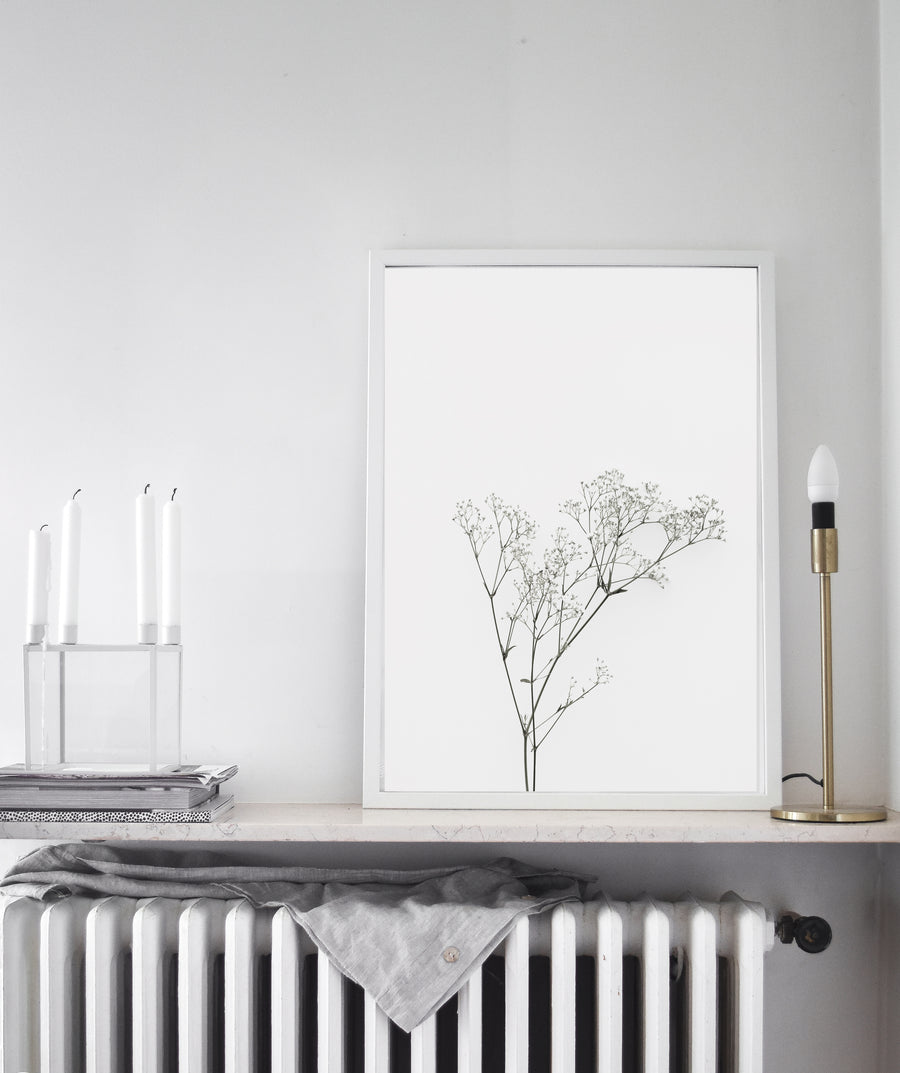 White Minimalist Floral photography Art Print Poster