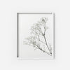 Wildflowers 2 - THE PRINTABLE CONCEPT - Printable art posterDigital Download -