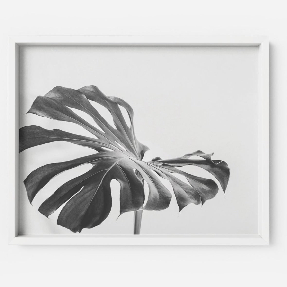 Monstera 2 - THE PRINTABLE CONCEPT - Printable art posterDigital Download -