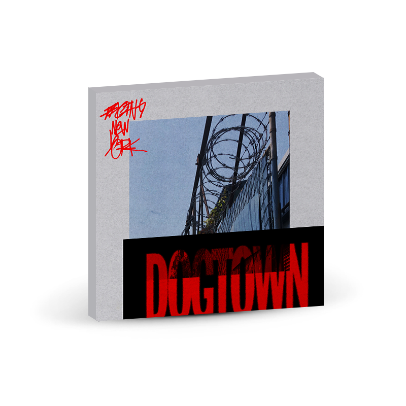 Facing New York : Dogtown Canvas Prints