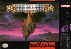 Brain Lord DMG LABEL    SUPER NINTENDO ENTERTAINMENT SYSTEM