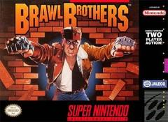 Brawl Brothers DMG LABEL    SUPER NINTENDO ENTERTAINMENT SYSTEM