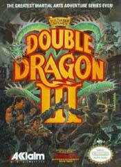Double Dragon III The Sacred Stones DMG LABEL    NINTENDO ENTERTAINMENT SYSTEM