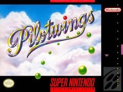Pilotwings DMG LABEL    SUPER NINTENDO ENTERTAINMENT SYSTEM