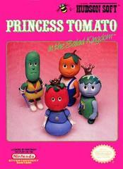 Princess Tomato in the Salad Kingdom     NINTENDO ENTERTAINMENT SYSTEM
