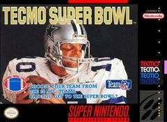 Tecmo Super Bowl DMG LABEL    SUPER NINTENDO ENTERTAINMENT SYSTEM