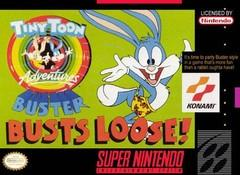 Tiny Toon Adventures Buster Busts Loose DMG LABEL    SUPER NINTENDO ENTERTAINMENT SYSTEM