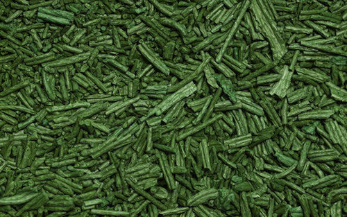 Organic Spirulina Powder - The Ultimate Green Superfood