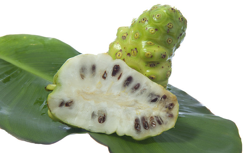 Noni Fruit Superfood