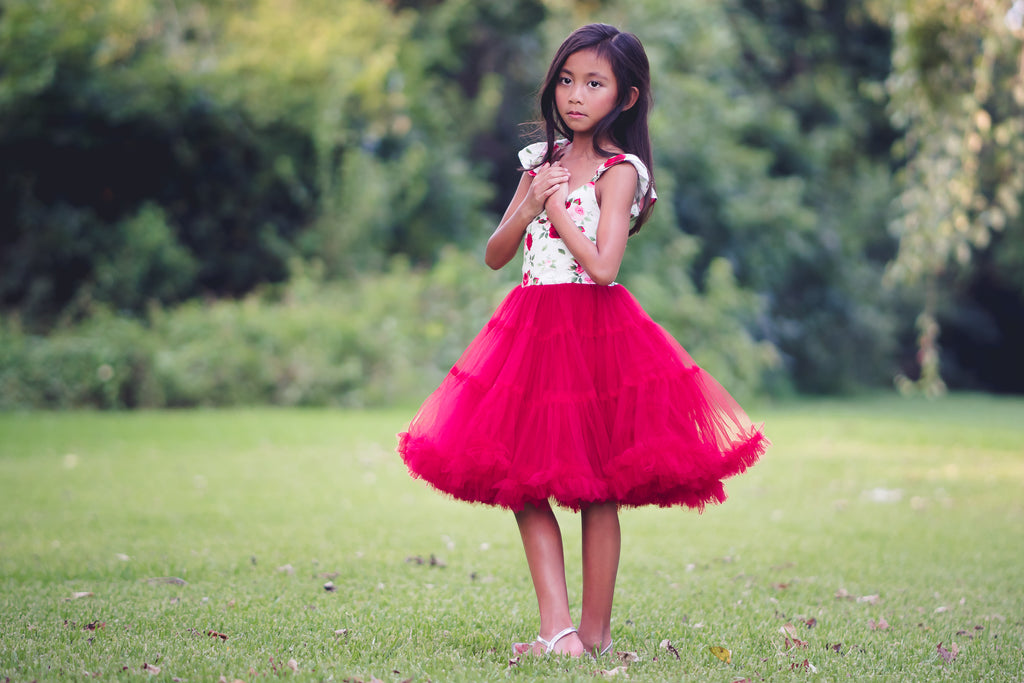 red floral rose Christmas tulle tutu twirl dress toddler girl tween