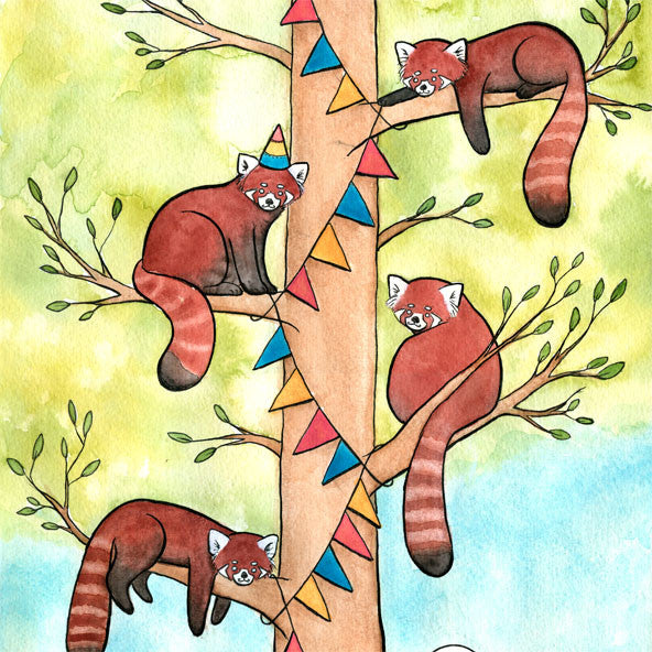 Red Panda Party