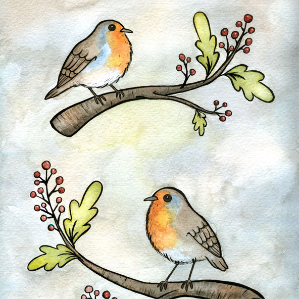 English Robins