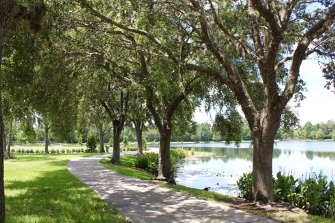 Best places to visit in orlando. Simple Snacks. Celebration Florida
