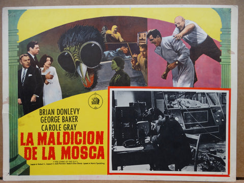 The Curse of the Fly 1965 (La Maldicion de la Mosca) Lobby Card