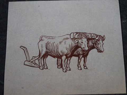 Alberto Beltrán- Pair of Oxen Harnessed to the Plow - Linoleum Etching - AP1376