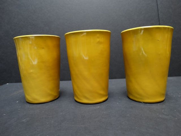 Catalina Island set of tumblers