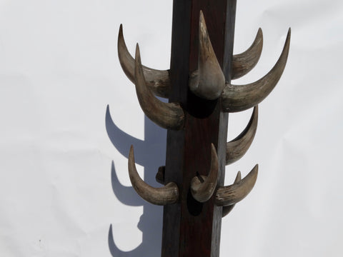 Buffalo Lodge Hat Rack/Coat Rack