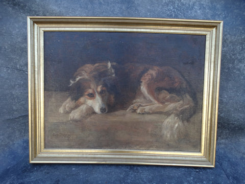 Portrait of a Collie by Edith Cheesman 1909