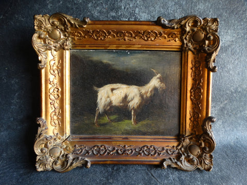 Early 19th Century Oil on Canvas - A Long-Haired Goat Against A Darkening Sky P2667