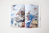 STUDIO NIENKE SEAWEED RESEARCH BOOK