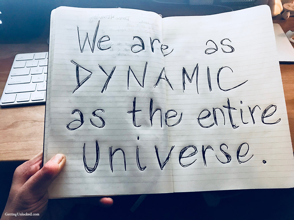 We Are As Dynamic as the Universe