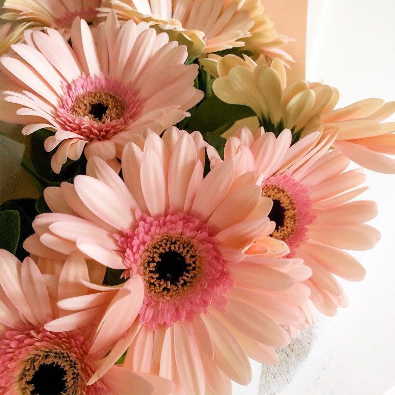 Bunch - Gerbera En Masse Bouquet