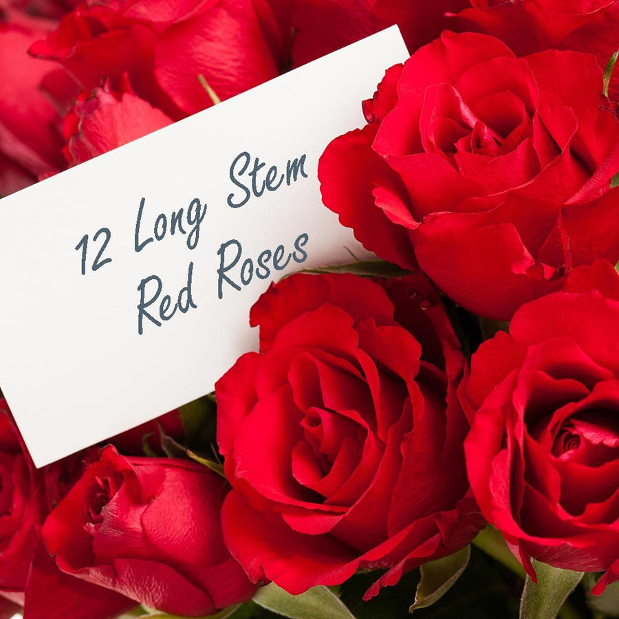 Valentine's Day - Premium One Dozen Long Stem Red Rose Bouquet