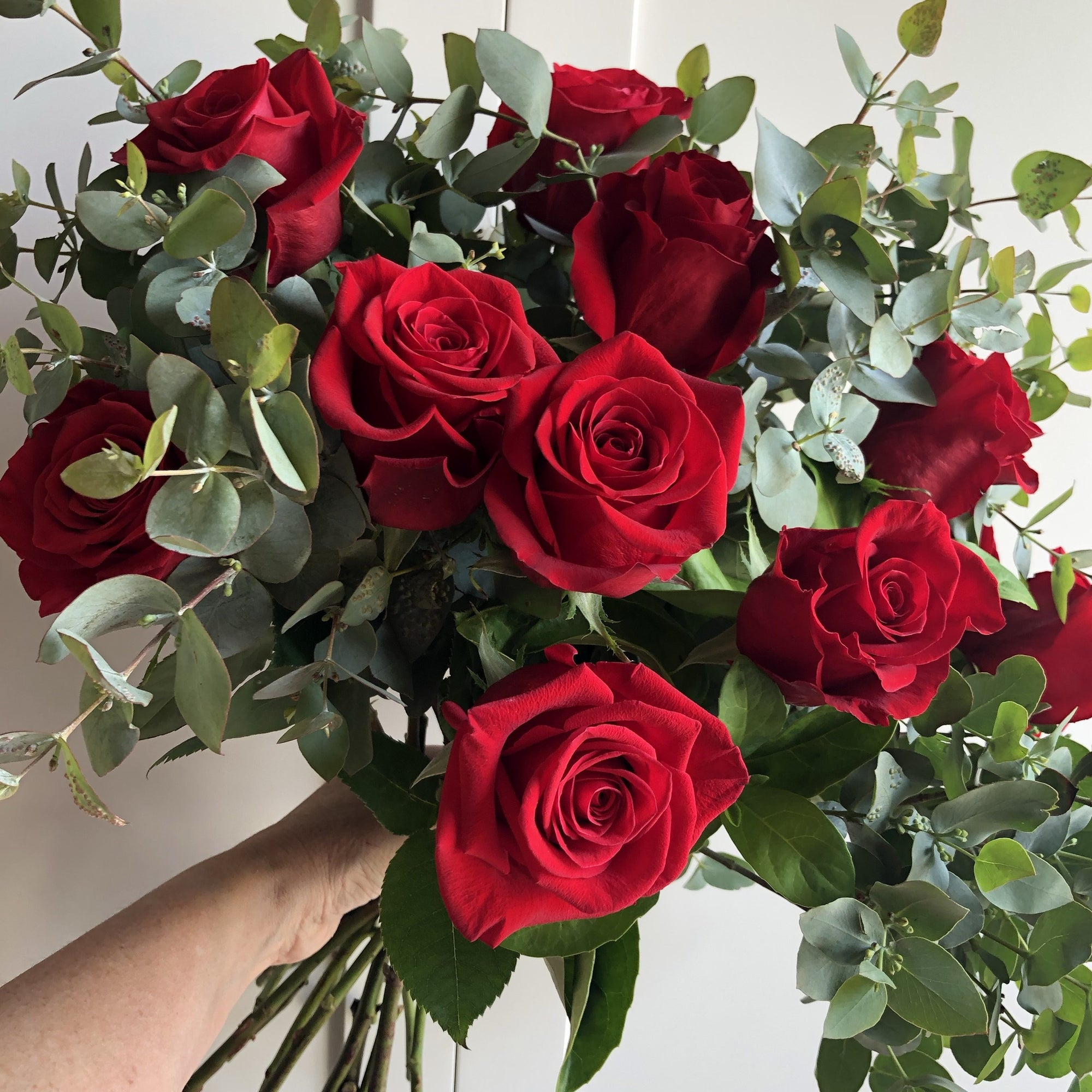 Valentine's Day - Bouquet of Premium 20 Red Roses Bouquet