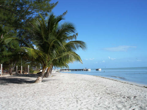 Freedom Shores COMPLETELY Accessible Vacation - Isla Aguada, Campeche, Mexico