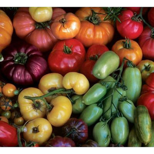 TOMATO 'Heirloom Mix'