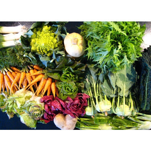 COOL SEASON / WINTER VEGETABLE PACK - 22 packets - Boondie Seeds