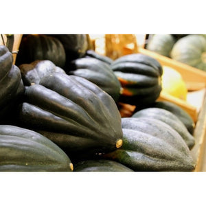 WINTER SQUASH 'Table Queen Acorn' / Pumpkin *ORGANIC* - Boondie Seeds
