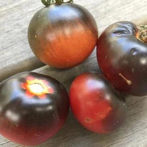 TOMATO 'Blue Chocolate' - Boondie Seeds