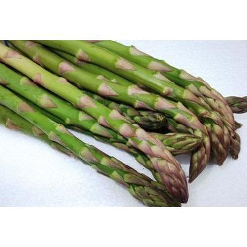 ASPARAGUS 'Mary Washington' - Boondie Seeds