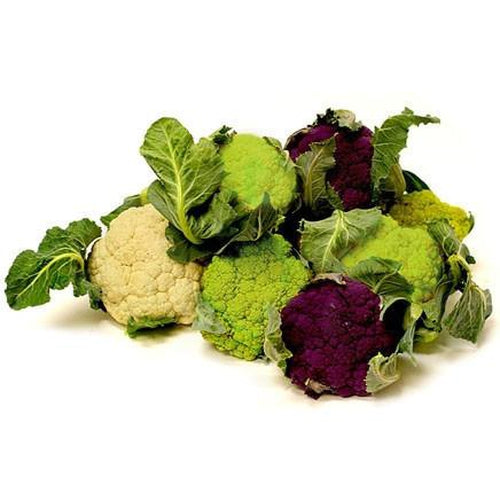 CAULIFLOWER 'Heirloom Mix' - Boondie Seeds