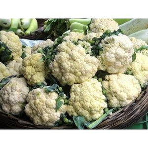 CAULIFLOWER 'Mini' - Boondie Seeds