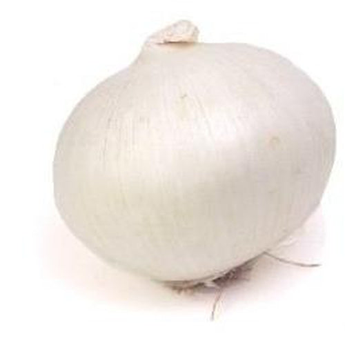 ONION 'Spanish White' - Boondie Seeds