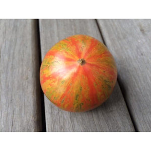 TOMATO 'Solar Flare' - Boondie Seeds