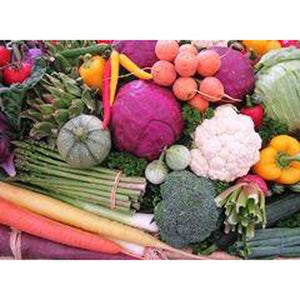 SPRING AND SUMMER VEGETABLE PACK - 25 pkts - Boondie Seeds