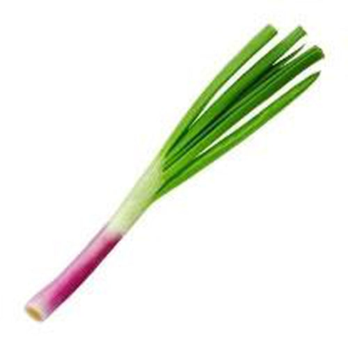 SPRING ONION 'Rossi'