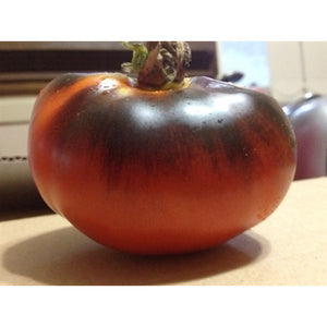 TOMATO 'Red and Blue' - Boondie Seeds