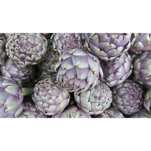 ARTICHOKE 'Purple Headed' - Boondie Seeds
