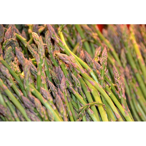 ASPARAGUS 'Argenteuil' - Boondie Seeds