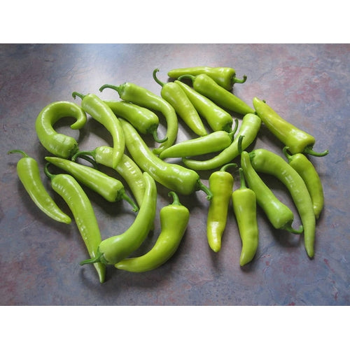 CAPSICUM 'Hungarian Wax Sweet' - Boondie Seeds