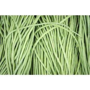 BEAN DWARF 'Snake' / Asparagus Bean / Yard Long Bean - Boondie Seeds