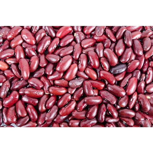 BEAN 'Red Kidney' / Mexican Bean - Boondie Seeds