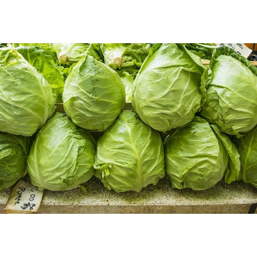 CABBAGE 'Sugarloaf' - Boondie Seeds