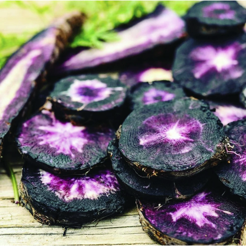 CARROT 'Black Nebula' seeds