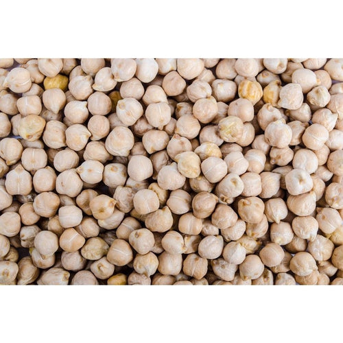 CHICKPEA 30 SEEDS / Make your own hummus! - Boondie Seeds