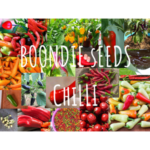 CHILLI VARIETY PACK - 10 packets - Boondie Seeds